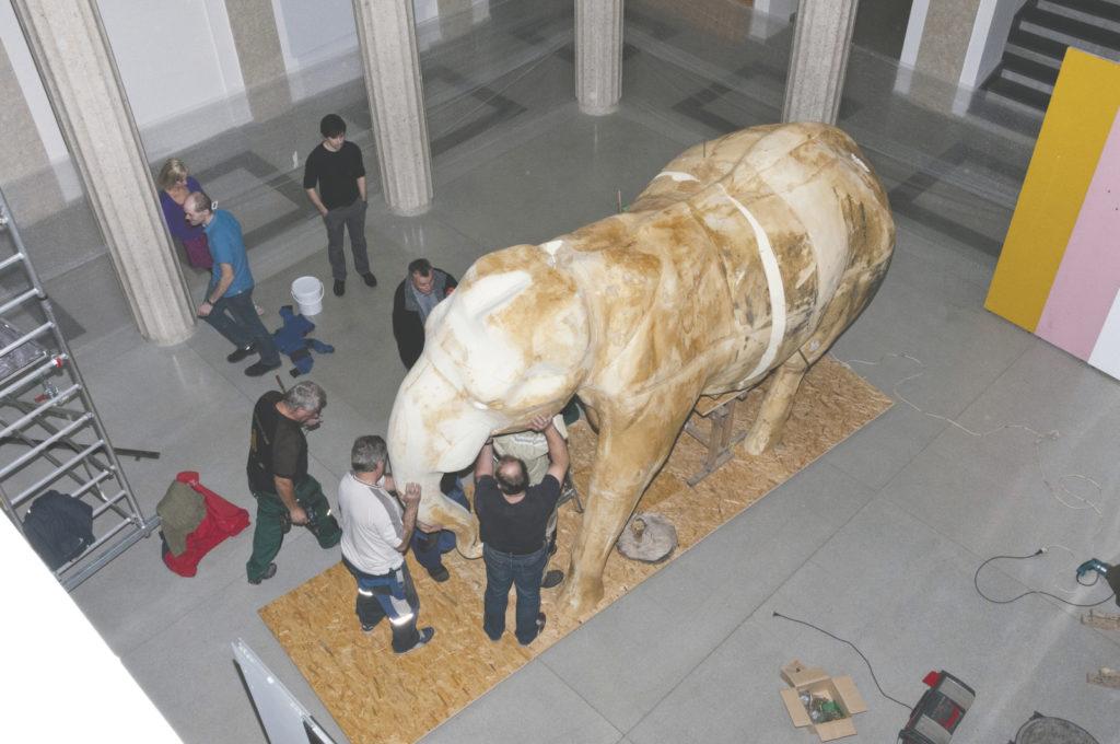 Preparovaný slon bude potažený kůží Calvina. Foto: Marcela Feretová